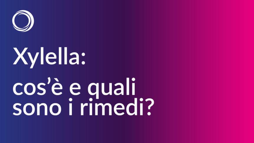 xylella-come-combatterla-rimedi